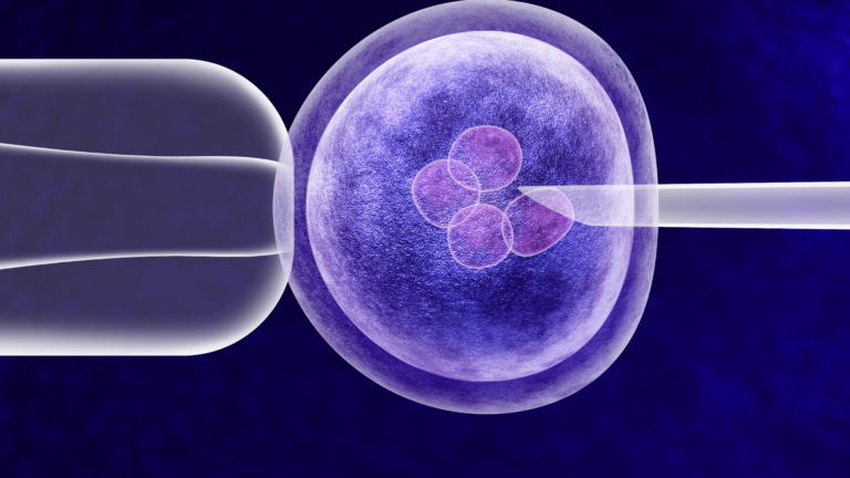 In Vitro Fertilization (IVF) treatment through microscope