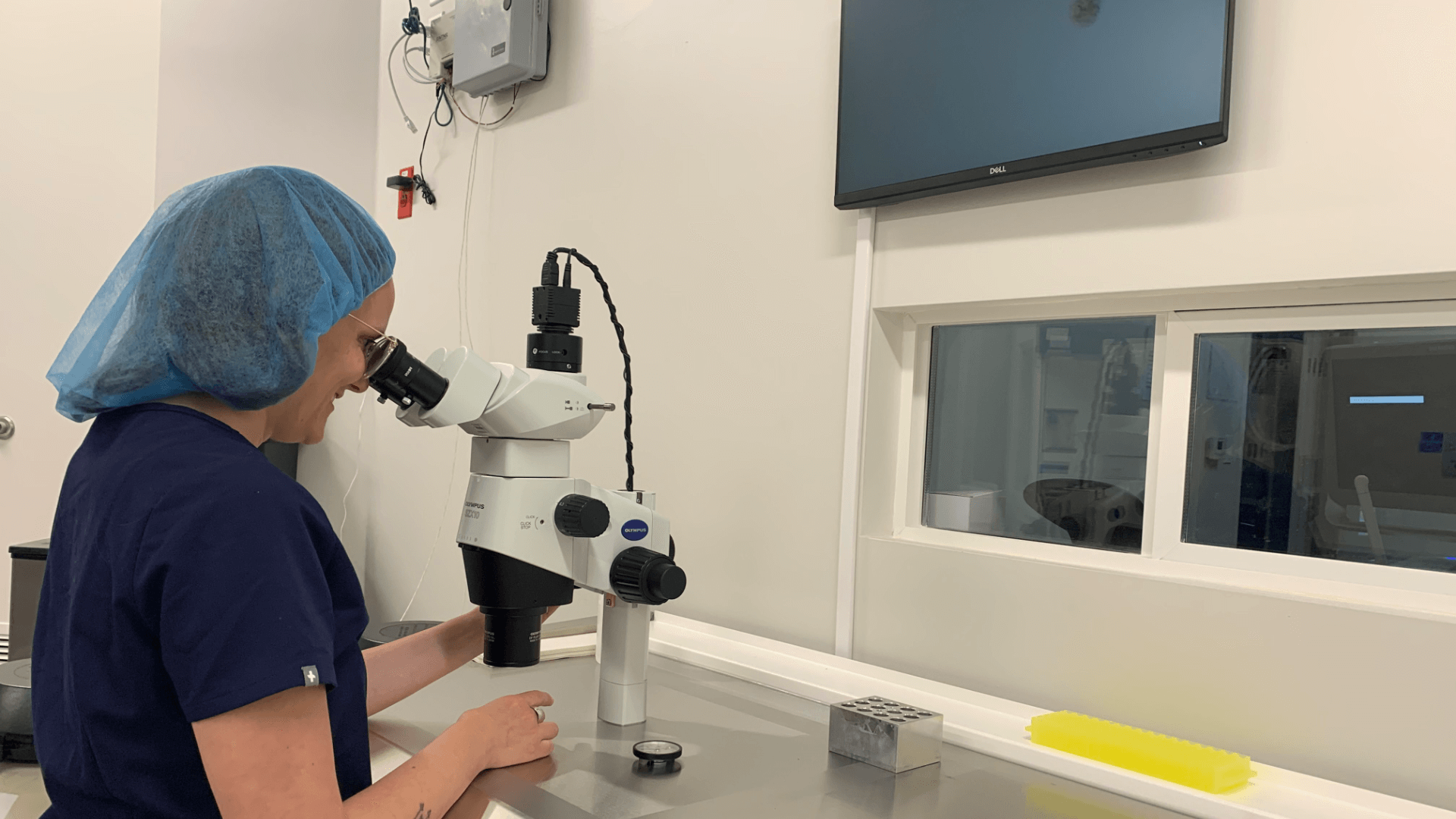 Embryologist in the lab